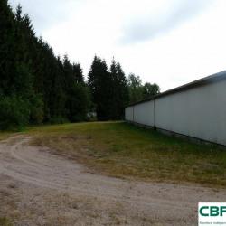 Vente Local d'activités Compreignac 1000 m²