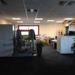 Vente Entrepôt Martainville-Épreville 1800 m²
