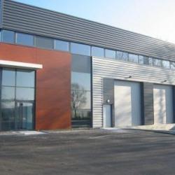 Location Local d'activités Treillières 484 m²