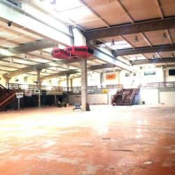 Vente Local d'activités Goussainville 5693 m²
