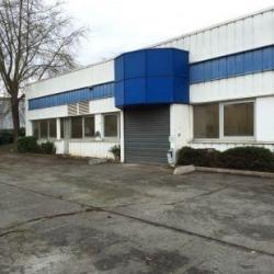 Vente Local d'activités Morangis 2458 m²