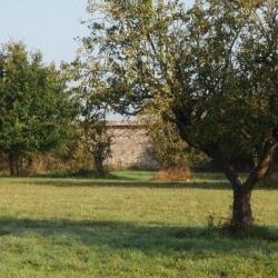 Terrain  de 304 m²  Mandres-les-Roses  (94520)