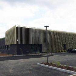 Location Bureau La Wantzenau 620,6 m²
