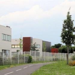 Location Local d'activités Stains 992 m²