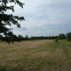Vente Terrain Toulouse 20000 m²