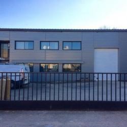Location Local d'activités Villeurbanne 440 m²
