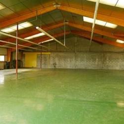 Vente Local d'activités Bourg-Blanc 1170 m²