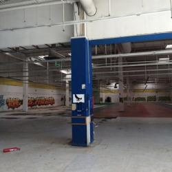 Location Local d'activités Thiais 2000 m²