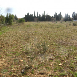 Vente Terrain Arles 35000 m²