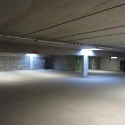 Location Local d'activités Carros 3000 m²
