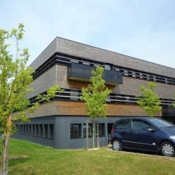 Location Bureau Loos 293 m²