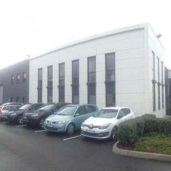 Location Local d'activités Saint-Fons 590 m²