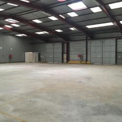Location Local d'activités Fontenay-Trésigny 812 m²