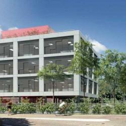 Location Bureau Dardilly 1690 m²