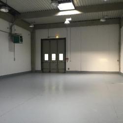 Location Local d'activités Pontault-Combault 282 m²