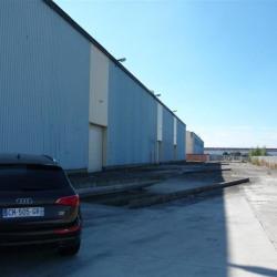 Location Entrepôt Sandouville 8000 m²