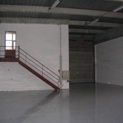 Location Local d'activités Villepinte 566 m²
