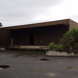 Location Local d'activités Gradignan 477 m²