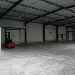 Location Entrepôt Pinsaguel 160 m²
