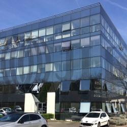 Location Bureau Guyancourt 65 m²