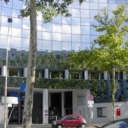 Location Bureau Lyon 3ème 207 m²