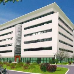 Location Bureau Schiltigheim 28 m²