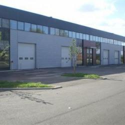 Location Local d'activités Élancourt 554 m²