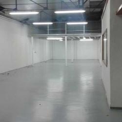 Location Local d'activités Villeparisis 1185 m²