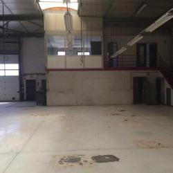 Location Local d'activités Genas 800 m²