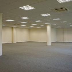 Location Bureau Les Ulis 229 m²