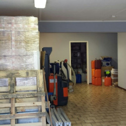 Location Local d'activités Saulx-les-Chartreux (91160)