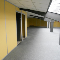 Location Bureau Montpellier 250 m²