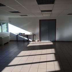 Vente Entrepôt Saint-Symphorien-d'Ozon 1675 m²