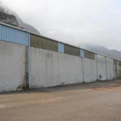 Location Local d'activités Noyarey 2152 m²