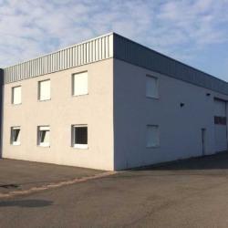 Location Local d'activités Molsheim 350 m²