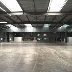 Location Entrepôt Villejust 8192 m²