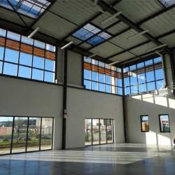 Location Local d'activités Collégien 8787 m²