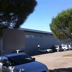 Location Local d'activités L'Union 1116 m²