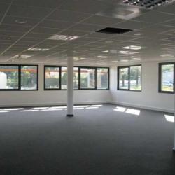 Location Bureau Sainte-Foy-lès-Lyon 729 m²