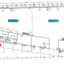Vente Local d'activités Villeneuve-le-Roi 2600 m²