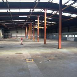 Vente Local d'activités Gonesse 2418 m²