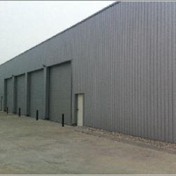 Location Local d'activités Vourles 350 m²