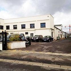 Vente Local d'activités Brie-Comte-Robert 3510 m²