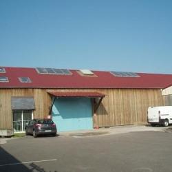 Location Local d'activités Caudebec-lès-Elbeuf 850 m²