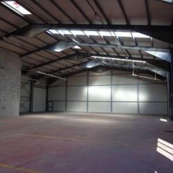 Vente Local d'activités Signes 1316 m²