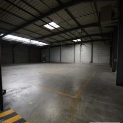 Location Local d'activités Vaulx-en-Velin 1137 m²