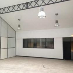 Location Bureau Lyon 9ème 287 m²