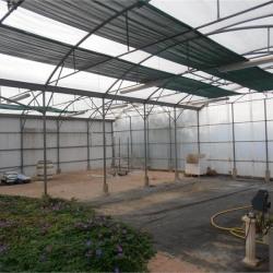 Vente Local d'activités Béziers 400 m²