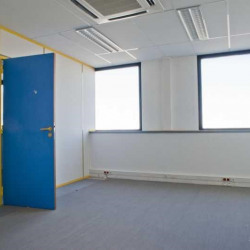 Location Local d'activités Villejuif 411 m²