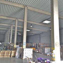Vente Local d'activités La Sentinelle 1291,6 m²